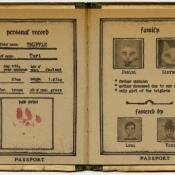 """Passport of Pawland for Turi"" 15cmx 11.5cm (6""x 4.6"") acrylic and mixed media"