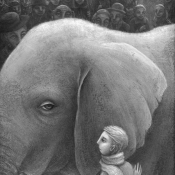 B08-elephant-006